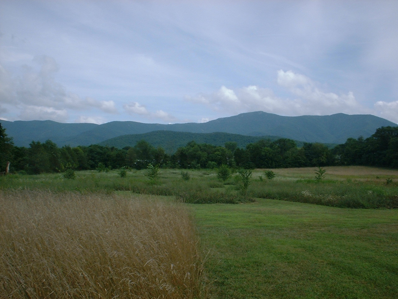 Luray, Virginia lots and property for sale